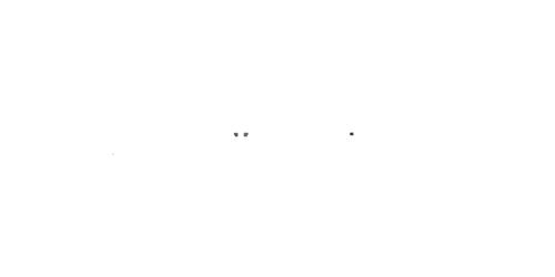 Karin Schiefer